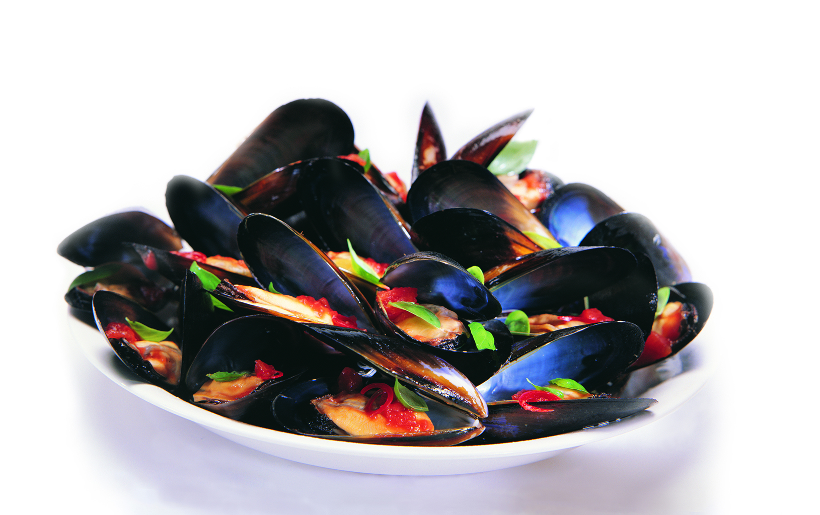 SeaBounty-mussels-web-image